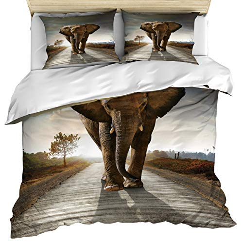 Anzona Luxury Microfiber 3 Piece Bedding Set Queen Size Funny Bohemian Elephant Wander on Lanscape 3PCS Zippered Duvet Cover Comforter Cover Set with Quilt Cover Pillow Cases for Kids/Teens/Adults