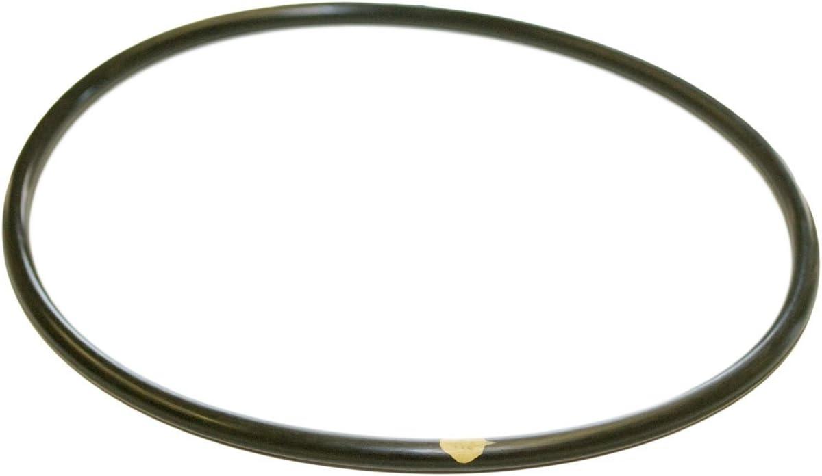 Hayward CLX200K Pool Chlorinator Lid O-Ring for CL200/CL220,Black