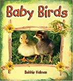 Baby Birds, Bobbie Kalman, 0778739694