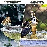 GESAIL Birdbath Heater