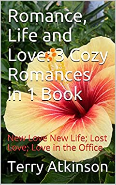 Romance, Life and Love: 3 Cozy Romances in 1 Book: New Love New Life; Lost Love; Love in the Office