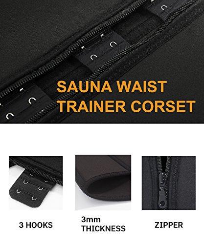 Buy everyday waist trainer