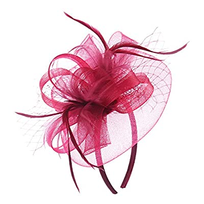 Women Feather Mesh Net Fascinator Hat with Hair Clip Cocktail Derby Race Royal Ascot