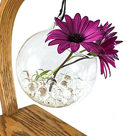 Amazon Com Glass Hanging Plant Terrarium With Water Balls 2 Pack
