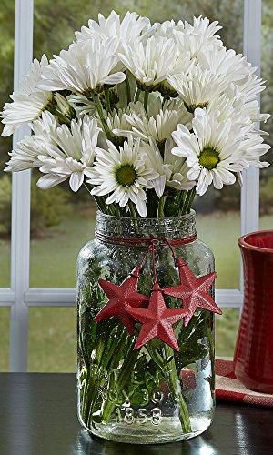 Park Designs Bubble Glass Jar Stars Red