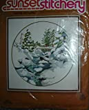 Sunset Stitchery Crewel Embroidery Kit Winter Snowfall By Charlene Gerrish