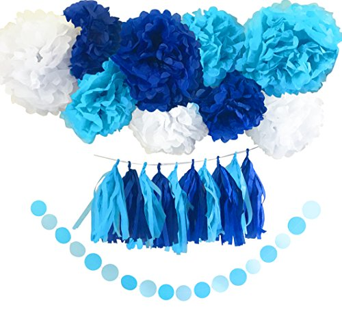 Boy's Baby Shower Decorations Set and Birthday Party Decor Kit / Blue and White Pom Pom Tissue Flowers and Tissue Paper Tassels Garland Set by Memories Party Decor 41 Pieces ()
