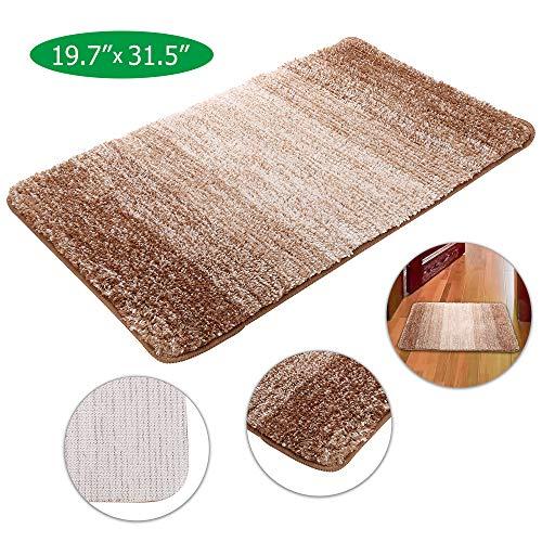Front Door Mat Indoor Doormat, Super Absorbent Mud Entrance Mat (31.5