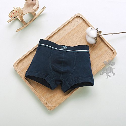 ea50da581ec8 5pcs Boys Briefs - Ropa interior de algodón Calzoncillos Bóxers Pantalones para  de 1-14