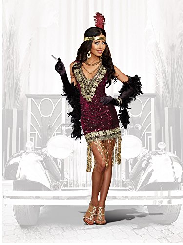 1920's Ladies Costumes (Dreamgirl Women's Sophisticated Lady 1920s Flapper Party Costume, Burgundy,)