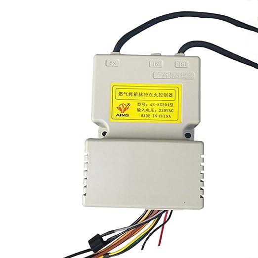 DishyKooker - Encendedor Especial AS-KX204 para Accesorios de ...