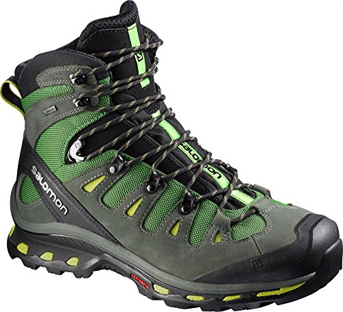 Salomon Mens Quest 4D 2 GTX Hiking Boot (10 D(M) US Tonic Green)