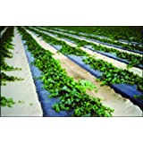 Photo Degradable Black Plastic Mulch - 0.6 Mil Embossed - 4ft X 600ft By Grower's Solution