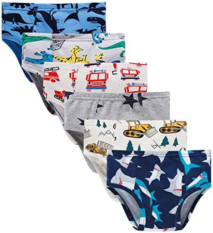 Boboking Little Boys Briefs Dinosaur Truck Toddler Kids Underwear (Pack of 6)