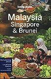 Malaysia Singapore & Brunei (Country Regional Guides)