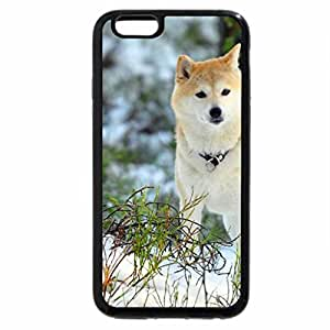 iPhone 6S Case, iPhone 6 Case (Black & White) - dog in winter forest