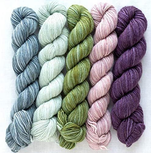 Manos Del Uruguay Silk Blend Fino Mini-Skein Set 1 Augusta handgef/ärbt mit wundersch/önem Farbverlauf. 5x20g 100g Seide Merino Extrafine