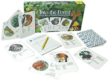 Amazon.com: Ampersand Press Into the Forest, Nature's Food Chain ...