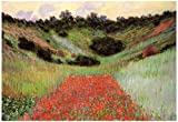Claude Monet Poppy Field of Flowers in Giverny Art Print Poster 19 x 13in