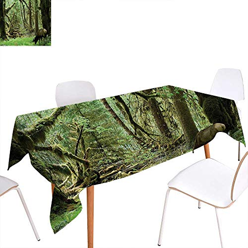 Warm Family Rainforest Rectangular Tablecloth Roosevelt Elk in Rainforest Wildlife National Park Washington Antlers Theme Oblong Wrinkle Resistant Tablecloth 50