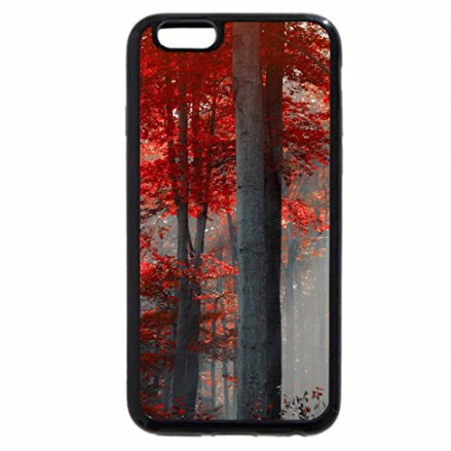 iPhone 6S / iPhone 6 Case (Black) Forest- Autumn