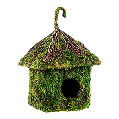 SuperMoss (56015) Shack Birdhouse, 6 by 8-Inch, Fresh Green
