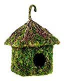 Super Moss (56015) Shack Birdhouse, 6 by 8-Inch, Fresh Green