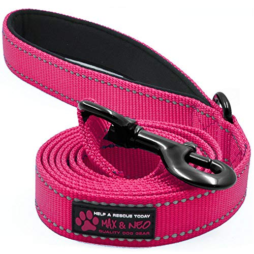 Max and Neo Reflective Nylon Dog Leash - We Donate a Leash to a Dog Rescue for Every Leash Sold (Pink, 6x1)