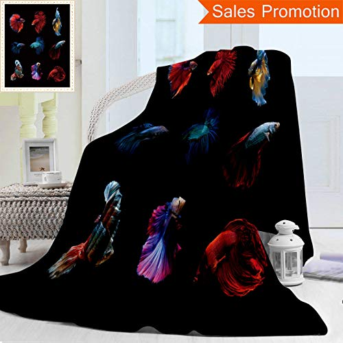 Unique Double Sides 3D Print Flannel Blanket Betta Fish Siamese Fighting Fish Betta Splendens Aquarium Moment Of Siamese Fighting Fish Cozy Plush Supersoft Blankets for Couch Bed, Twin Size 60