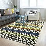 Interior carpet Rectangular Carpet Carpet Door Entrance Carpet Door Mat Living Room Carpet Coffee Table Mat (160 230 Cm) blanket ( Color : A , Size : 160230cm )