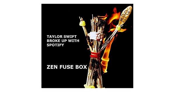 Taylor Swift Broke Up With Spotify de Zen Fuse Box en Amazon ...