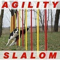 AGILITY SLALOM - Kit piquets de slalom rouge/jaune, ronds, flexibles