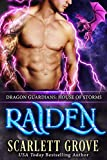 Raiden: House of Storms