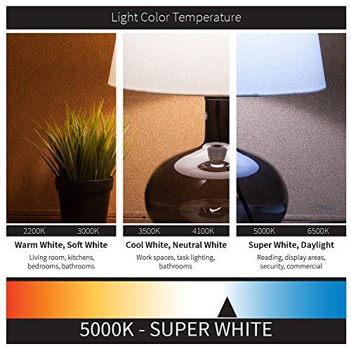 Sunlite F32T8/SP850/10PK T8 High Performance Medium Bi-Pin (G13) Base Straight Tube Light Bulb (10 Pack), 32W/5000K,... by Sunlite (Image #1)