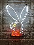 Desung Brand New 14'' Bunny Rabbit Gift Lamp Decorated Acrylic Panel Handmade Custom Design Neon Sign Light WD35