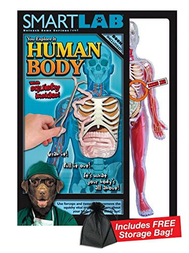 (Smart Lab Squishy Human Body with Free Storage Bag)