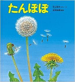 たんぽぽ (かがくのとも絵本) | ...