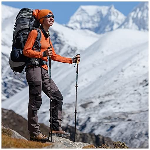 Strong Carbon Fiber Trekking Poles w/ Cork Grips - Collapsible Hiking / Walking Sticks
