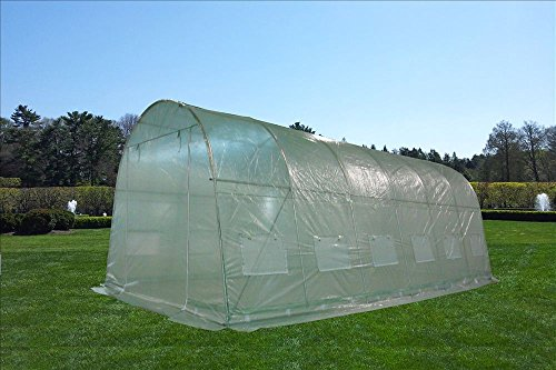 DELTA Canopies - Large Heavy Duty Green House Walk in Greenhouse Hothouse 20' X 10' 125 Pounds by DELTA Canopies  (Image #8)