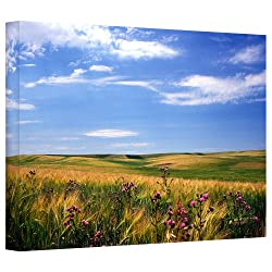 Art Wall Kathy Yates Field Of Dreams Gallery Wrapped Canvas Art, 32 By 48-inch