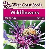 Wildflower Seeds - Bee Garden Blend