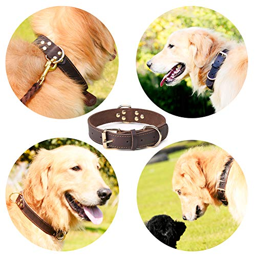 "DAIHAQIKO Leather Dog Collar Genuine Leather Alloy Hardware Double D-Ring 3 Best for Medium Large and Extra Large Dogs (M: 1.2"" Wide for 17""-23"" Neck, Single Stitch - Brown)"