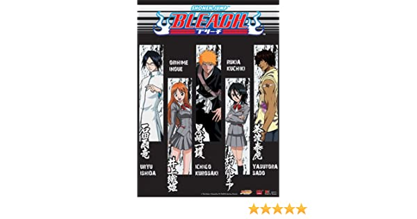 Great Eastern Entertainment Bleach Character Highlight Wall Scroll 33 by 44-Inch 9711