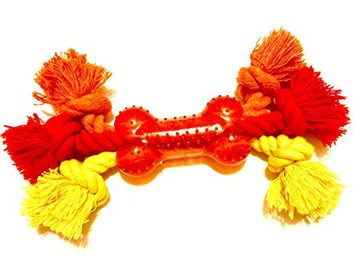 Dog Teething Toy Training Interactive product image
