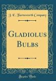 Amazon / Forgotten Books: Gladiolus Bulbs Classic Reprint (J E Farnsworth Company)