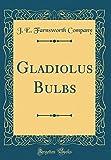Amazon / Forgotten Books: Gladiolus Bulbs Classic Reprint (J E Farnsworth Company)
