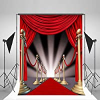 5x7ft LFEEY Vinyl Thin Backdrop Photography Background Luxurious Stage Light Red Carpet Scene Backdrop,1.5(W)x2.2(H)m for Photo Studio Props