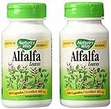 NOW  Foods Organic Alfalfa Seeds, 12-Ounce