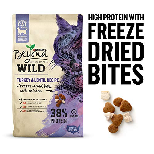 Purina Beyond High Protein, Grain Free, Natural Dry Cat Food, WILD Turkey Recipe + Freeze Dried Bites - 5 lb. Bag from Purina Beyond