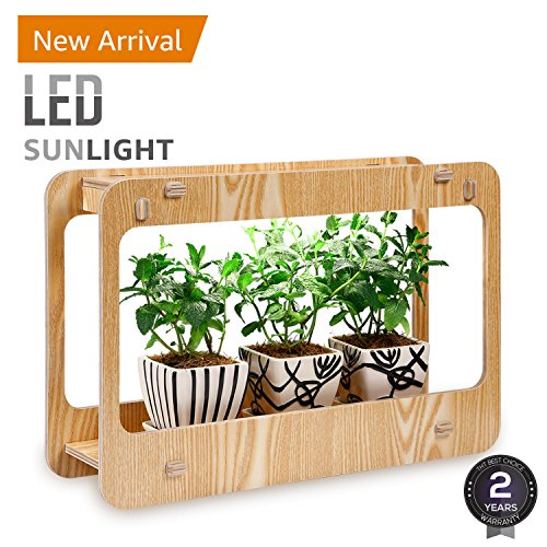 Led Lighting Systems For Indoor Growing in Florida - 5
